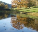 Stourhead October 2015 - Daphne Cox
