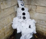 12 - Olaf (created by WiSCA)