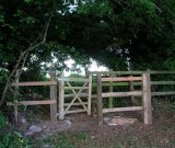 Between Hartley Farm and Haugh Potticks Farm - New gate - Photography - Brian Micklam