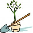 GARDENING Spring into Spring with a one off Garden Blitz or Revamp with regular […]